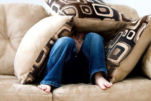 Fobia de Barata: Como perder a fobia em apenas uma sessão de Hipnoterapia